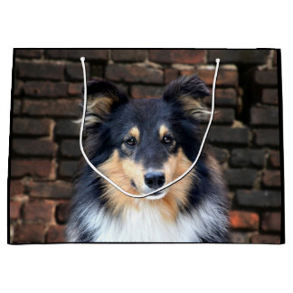 Tricolor Sheltie face Large Gift Bag