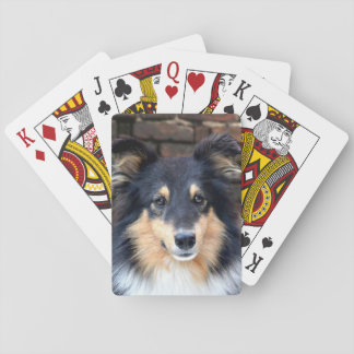 Tricolor Sheltie face Playing Cards