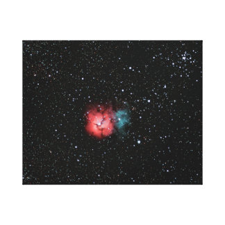 Trifid Nebula #5 Canvas Print