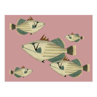 Triggerfish Postcard