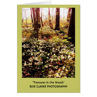 Trillium Treasures in the Woods Card