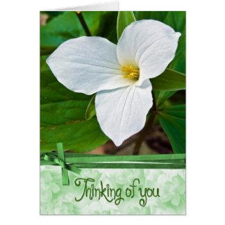 Trillium White Card