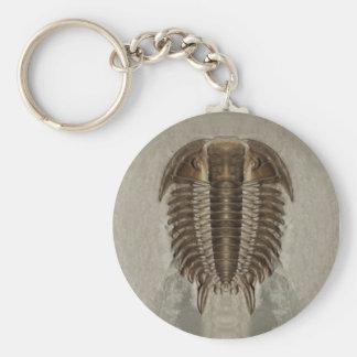 Trilobite Fossil Keychain