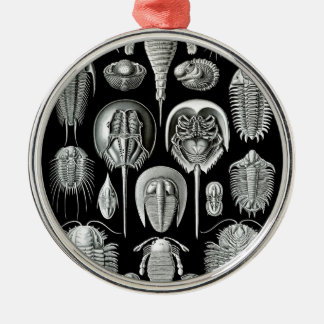 Trilobites and Fossils in Black and White Metal Ornament