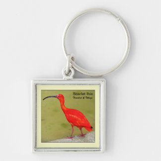 Trinidad and Tobago Red Scarlet Ibis Silver-Colored Square Keychain