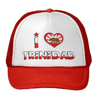 Trinidad, CA Mesh Hat