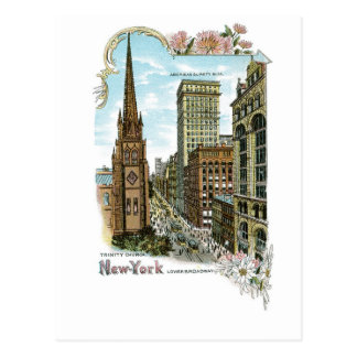 Trinity Church. New-York, Lower Broadway Postcard