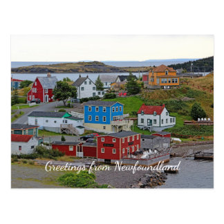 Trinity Newfoundland Postcard