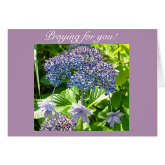 Trinity Praying For You Card