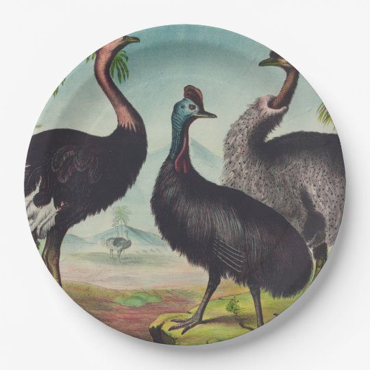 Trio of Ostriches 9 Inch Paper Plate