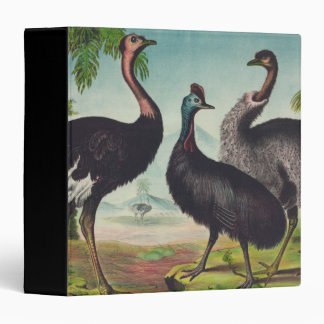 Trio of Ostriches Binders