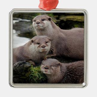 Trio of Otters Metal Ornament