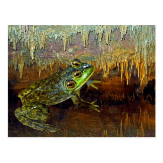 Triopse Fantasy Three-Eyed Frog in a Cave Pool Postcard