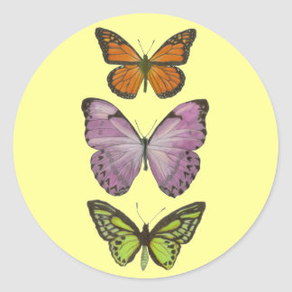 Triple Butterfly Sticker