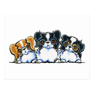 Triple Japanese Chin Postcard