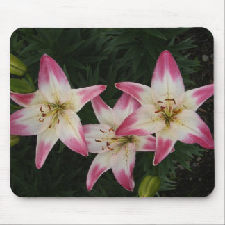 Triple Lily ~ mousepad