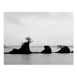 Triple Rock String of Siletz Bay Postcard