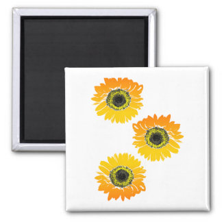 Triple Sunflowers Square Magnet