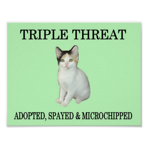 Triple Threat Posters