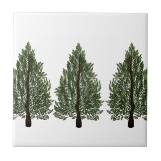 Tripple Pines Ceramic Tiles