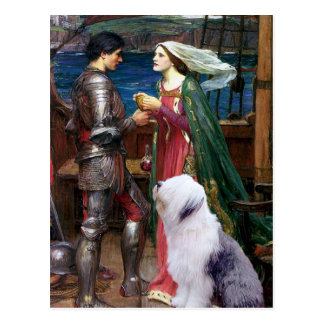 Tristam and Isolde-Old English Sheepdog 1 Postcard