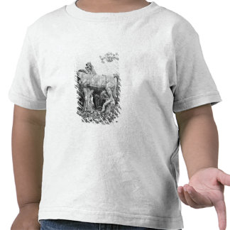 Tritons grooming two horses of the sun t-shirts