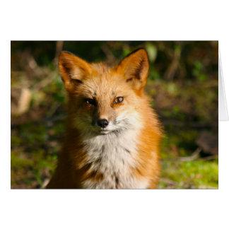 Trixie the fox card