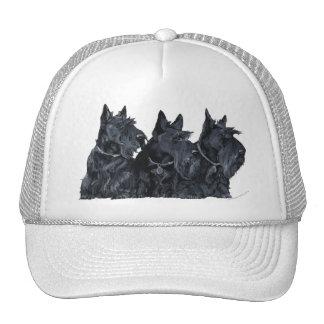 Trois terriers écossais casquettes