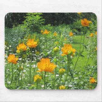 Trollius Golden Queen Late Spring Garden Mouse Pad