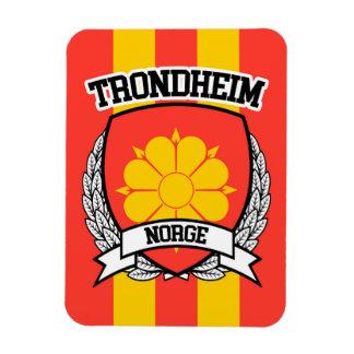 Trondheim Magnet