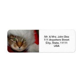 """Trooper The Cat"" Sandpaper Kisses Address Labels"