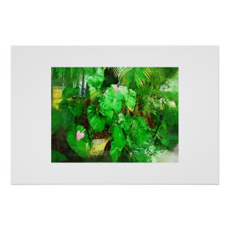 Tropical Anthurium oil painting collection Poster