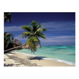 Tropical Beach, Anse Sourse D'Argent, La Digue Postcard