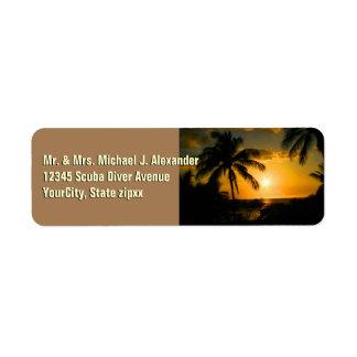 Tropical Beach Palm Trees