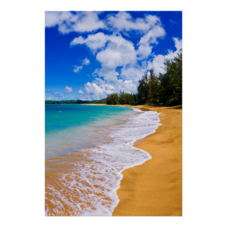Tropical beach paradise, Hawaii Poster