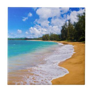 Tropical beach paradise, Hawaii Tile