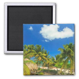 Tropical beach resort, Belize Magnet