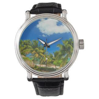 Tropical beach resort, Belize Watch