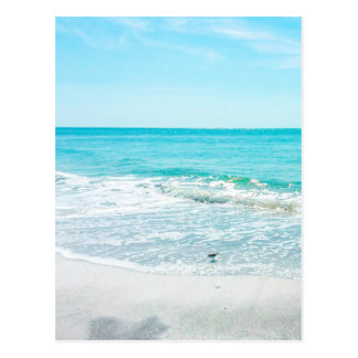 Tropical Beach Sand Ocean Waves Sea Shells Gulf Postcard