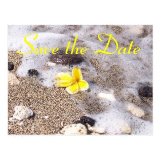 Tropical Beach Save the Date Plumeria Postcard