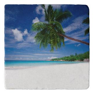 Tropical Beach | Seychelles Trivet
