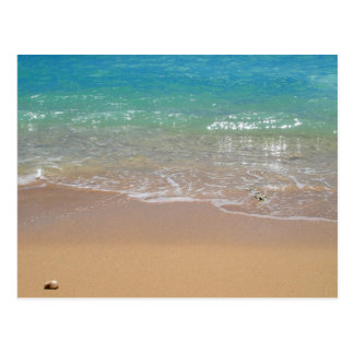 Tropical Beach - Waikiki, Oahu, Hawaii Postcard