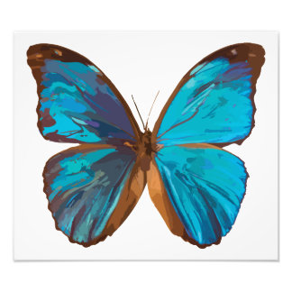 Tropical Blue and Turquoise Gem Butterfly Photo Print