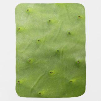 Tropical Botanical Green Cactus Photo Baby Blanket