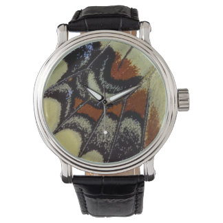 Tropical butterfly close-up watch