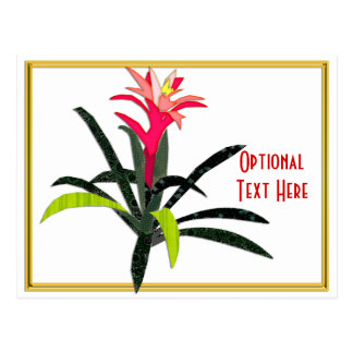 Tropical Christmas Bromeliad Postcard