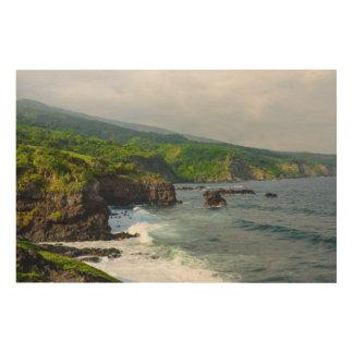 Tropical Cliffs in Maui Hawaii Wood Wall Art