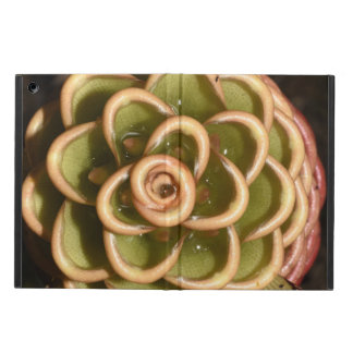 Tropical Colorful Flower - iPad Air Case with No