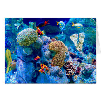 Tropical Colorful Undersea Coral Reef Card