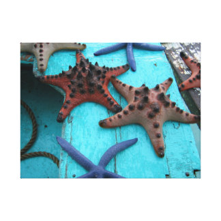 Tropical, colouful starfish canvas print